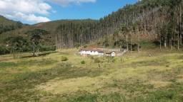 Fazenda para arrendamento entre Passa Vinte e Liberdade/MG