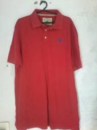 Camisas e bermuda