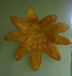 Pendureco de folha de mamona