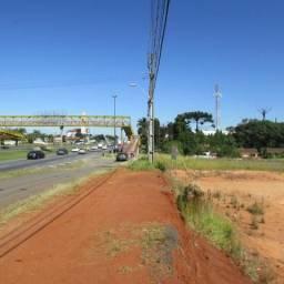 F- AR0034 Área à venda, 22950 m² por R$ 2.500.000 - Rondinha - Campo Largo/PR