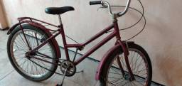 Bicicleta reduzida