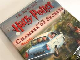 Livro Harry Potter and the Chamber of Secrets - Novo
