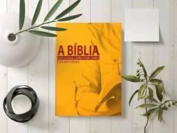 A Bíblia explicada livro por livro