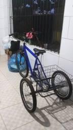 Bicicleta Triciclo de Luxo aro 26 Completa