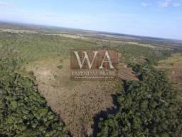 Fazenda a 55 km da capital do estado do Tocantins