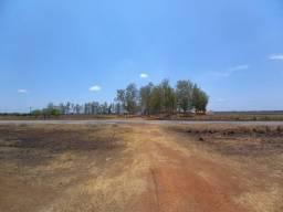 Vendo Fazenda para soja proxima ao Porto de Itaqui na BR-135 5.600 hectares