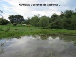 Sítio 45.000 m2 Mina d´água, poço, Riacho, 2 lagos Ref. 157 Silva Corretor