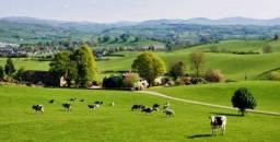 {FR} Crédito Rural para  Arrendar