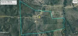 Fazenda 1352 Hectares, Pecuaria, Porto Murtinho, Otima Localização!!!