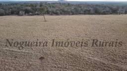 Título do anúncio: Fazenda com 70 alqueires ótima para agricultura (Nogueira Imóveis Rurais)