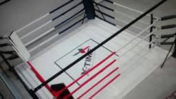 Ringue de solo boxe e muay thai completo novo 4m x 4m