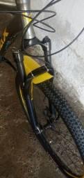 Bicicleta Audax xnc