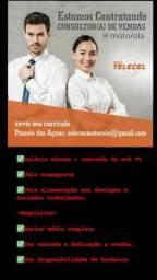 Consultor de Vendas Motorola