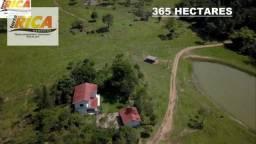 Fazenda com 365 Hectares à venda em Monte Negro/Rondônia