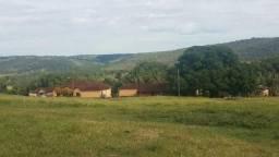 Fazenda 309 alqueires