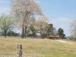Rural fazenda com 8 quartos - Bairro Centro em Cáceres