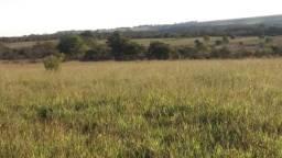 Vendo Fazenda 180 hectare