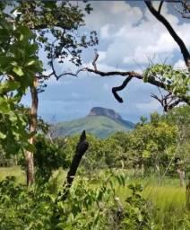 Propriedade Rural com 02 hectares
