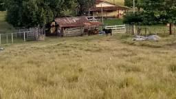 Fazenda de 193 Hectares em Patos de Minas