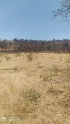 Vendo terreno no Campim