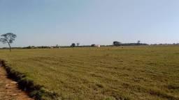 Área de 5.000m2 região Chácara das Mansões