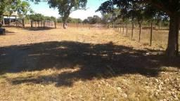 Fazenda na bacia do Araguaia 105 alqueires
