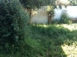 Jardinagens jardim jardim jardim jardim jardim jardim jardim jardim jardim