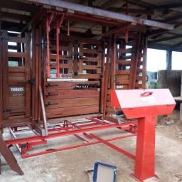 Troncos e balança para bovinos
