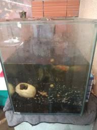Vende se um aquário tamanho 1,40