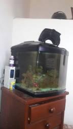 Aquario Marinho Jad