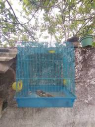 Gaiola dê hamster boa meu zap *