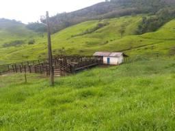 Vendo está propriedade de 35 alqueires no município de Mimoso do Sul/ES
