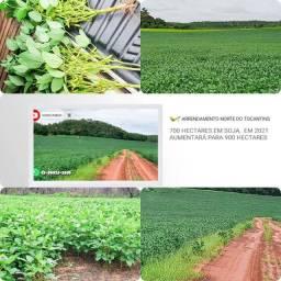 Arrendamento  fazenda terra