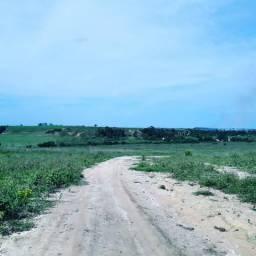 Arrendo (alugo) propriedade rural 9 alqueires (440.000 m2)