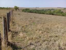 Fazenda a venda de 6 alqueires para pecuária na região de Caldas Novas GO