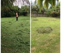 Maranhão manutenção de jardins  limpeza e roçamento de lote!    (31)9  *