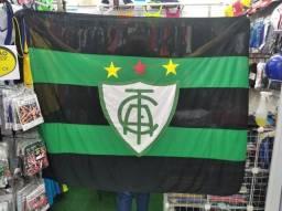 Bandeira de time