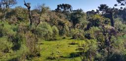 Título do anúncio: Terreno Rural em Urubici