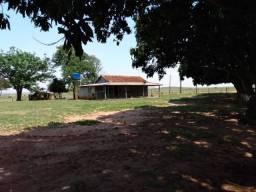 Fazenda a venda no Mato Grosso do Sul - Amambaí 301 Alqueires
