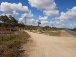 Terreno as margens da BA-502, São Gonçalo dos Campos - BA,