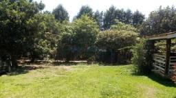 Chácara à venda em Parque dante marmirolli, Sumaré cod:CH275022