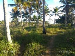 Sítio no iguape Ilhéus próximo da Praia