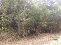 Terrenos a venda no Itaperuçu
