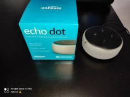 Echo dot Alexa