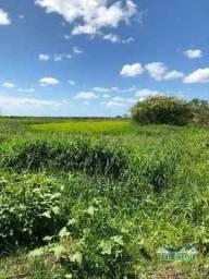 Velleda oferece Área com 27 hectares, com outorga e escritura, ideal p/ plantio