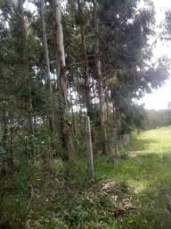 Vendo propriedade rural