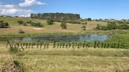 Chácara com 20.000 m², bela represa, oportunidade (Nogueira Imóveis Rurais)