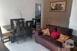Título do anúncio: Apartamento à venda com 3 dormitórios em Novo glória, Belo horizonte cod:337039