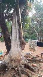 Tarrafa maia grande
