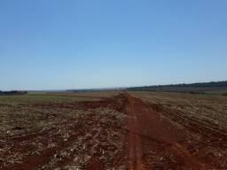 Excelente fazenda dupla aptidão com 520 alqueires região de Londrina Pr